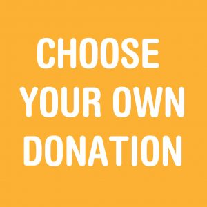 Choose Your Donation Amount
